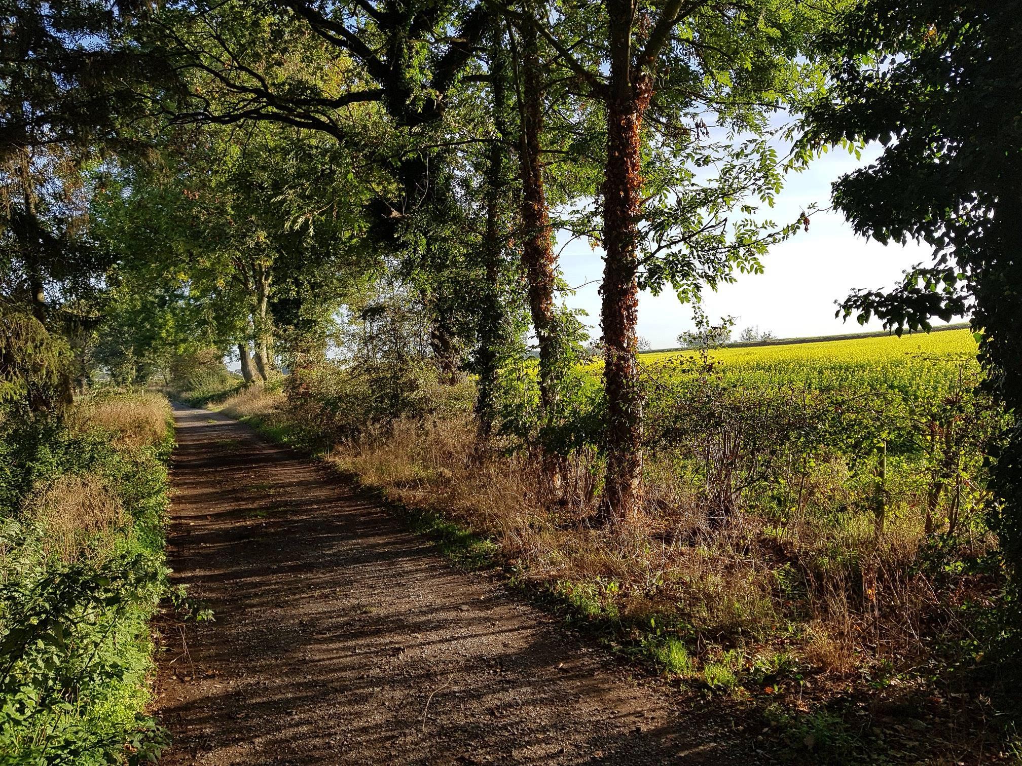Conseil communal 21/09/2020 – notre intervention sur le Chemin de Richelle